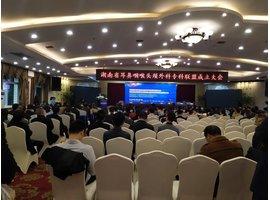 湖南省耳鼻喉头颈外科专科联盟成立大会